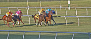 Jockey Silks Framed Prints - Trying Framed Print by East Coast Barrier Islands Betsy A Cutler