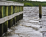 River Flooding Posters - TS Debby Alafia Boat Dock After The Storm Poster by Lawrence Ott