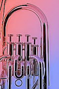 Tuba Euphonium Valves Isolated Print by M K  Miller