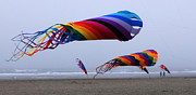 Kites Metal Prints - Tube Kites Metal Print by Bob Christopher