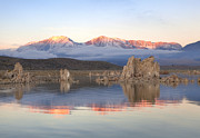Tufa Posters - Tufa In Lake, Pre-sunrise With Fog Against Sierra Nevada Mountains, Mono Lake, California, Usa Poster by Diane Miller