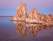 Tufa Posters - Tufa Reflection At Mono Lake Poster by Sean Duan