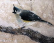 Titmouse Paintings - Tufted Titmouse by Gary Gibson