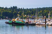 Sail Boats Prints - Tug Boats At Bainbridge Island Print by Heidi Smith