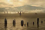 Pilings Photos - Tugboat in the Mist by Idaho Scenic Images Linda Lantzy