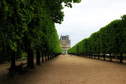 Tuileries Art - Tuileries Gardens 2 by Andrew Fare