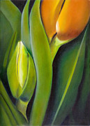 Naturalistic Framed Prints - Tulip Detail Framed Print by Tzvi Abraham