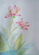 Tulip Duo I  Print by Debbie Portwood
