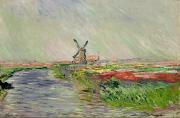 Windmill Posters - Tulip Field in Holland Poster by Claude Monet