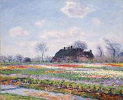 Tulip Paintings - Tulip Fields at Sassenheim by Claude Monet