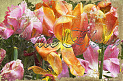 French Country Mixed Media Posters - Tulip Flower Shop Sign Poster by AdSpice Studios