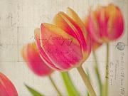 Easter Flowers Posters - Tulip Haze Poster by June Marie Sobrito