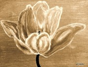 Tulip In Brown Tones Print by Marsha Heiken