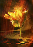 Hildingsson Prints - Tulip in movement Print by Johnny Hildingsson