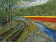 James Geddes - Tulip Road