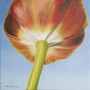 Photorealism Originals - Tulip by Rob De Vries