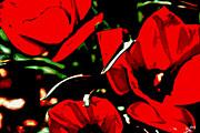 Tulip Tango Print by Diane montana Jansson