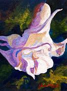 Marion Rose - Tulip Tree
