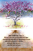 Tulip Tree Prints - Tulip Tree with Poem Print by Ken Meyer jr