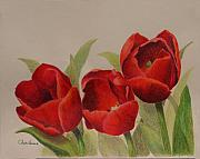 Trio Drawings Prints - Tulip Trio Print by Phyllis Howard