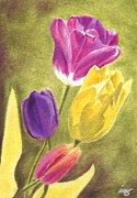Bud Pastels Prints - Tulips 2012 Print by Iris M Gross