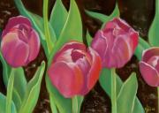 Red Leaves Pastels - Tulips by Candice Wright