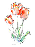 Tulips Drawings Prints - Tulips Flower Paintings 1 Print by Gordon Punt