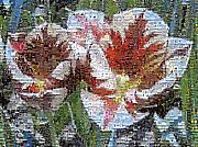 Tulips In Springtime Photomosaic Print by Michelle Calkins