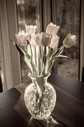 Evening Flower Originals - Tulips by Itay Dollinger