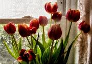 Indoor Still Life Prints - Tulips Print by Karen M Scovill