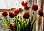 Tulips Print by Karen M Scovill