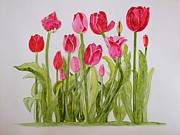 Art That Pops Framed Prints - Tulips on Yupo Framed Print by Donna Wiegand