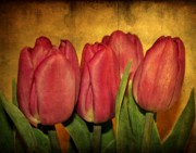 Purple Flowers Digital Art - Tulips standing by Cathie Tyler