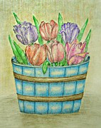 Tulips Drawings Prints - Tulips  Print by Thuraya R