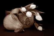 Sepia Art - Tulips with Pear II by Tom Mc Nemar