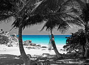 Travelpixpro Posters - Tulum Mexico Beach Color Splash Black and White Poster by Shawn OBrien