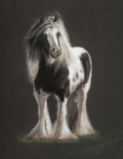 Gypsy Cob Framed Prints - Tumbleweed Framed Print by Terry Kirkland Cook