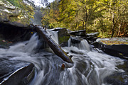 Creeks Prints - Tumbling Print by Debra and Dave Vanderlaan