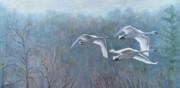 Tundra Trio Print by Anda Kett