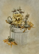 Floral Still Life Prints - Turn Turn Turn Print by Robin-lee Vieira