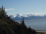 Sheila J Hall - Turnagain Arm Alaska