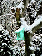 Snow Storm Art - Turquoise Birdhouse in Winter by Susan Savad
