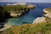 Point Lobos Reserve Art - Turquoise colored waters by National Geographic