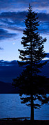 Leadville Prints - Turquoise Lake Twilight Print by Adam Pender