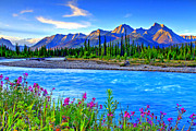 Wildflowers Prints - Turquoise River Print by Scott Mahon
