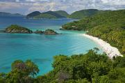 Sea View Framed Prints - Turquoise Water At Trunk Bay, St. John Framed Print by Michael Melford