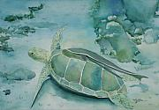 Ocean Turtle Paintings - Turtle and Friend by Mary Benke