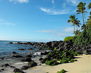 Lava Rock Prints - Turtle Beach Oahu Hawaii Print by Rebecca Margraf
