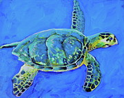 Green Sea Turtle Paintings - Turtle by Hannah Cook