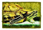 Pets Art Digital Art - Turtle Love by Terry Mulligan